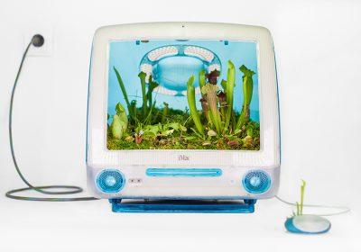 Artista francês usa computadores antigos da Apple como vaso de plantas